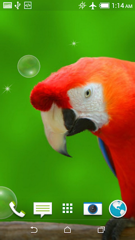 android Birds Jigsaw Puzzle + LWP Screenshot 6