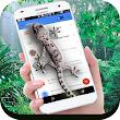 Lizard Screen On Phone