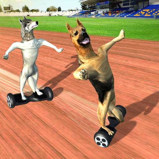 Race Dog on HoverBoard