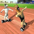 HoverBoard dog surfer : dog Racing Game