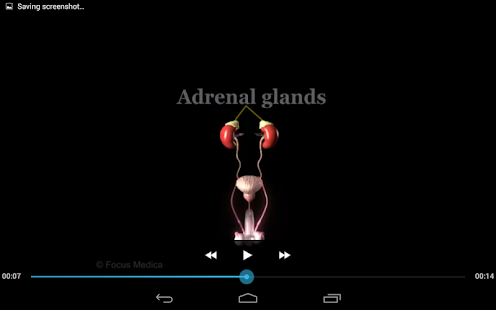 Gynecology-Animated Dictionary- screenshot thumbnail