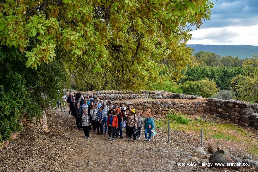 Экскурсия на Севере Израиля с гидом Светланой Фиалковой. Тель Дан.