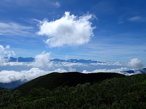 南アルプスに雲が湧き始める