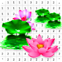 Lotus Color By Number - Pixel Art icon