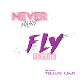 FLY (Remix)