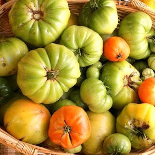 Green Tomato Ketchup