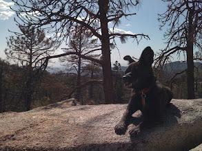 Photo: Hiking in Big Bear, CA