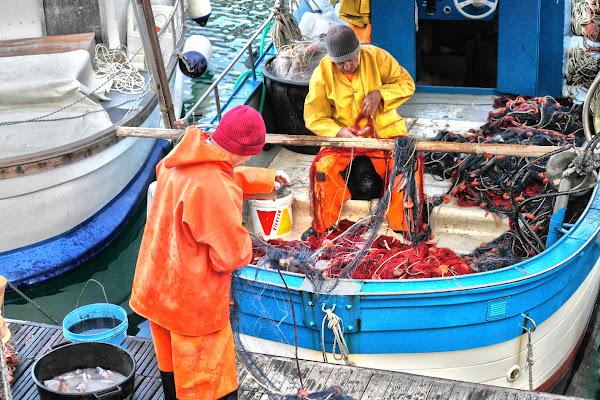 ...poche pesce nella rete, lunghi giorni in mezzo al mare ... di fasele72
