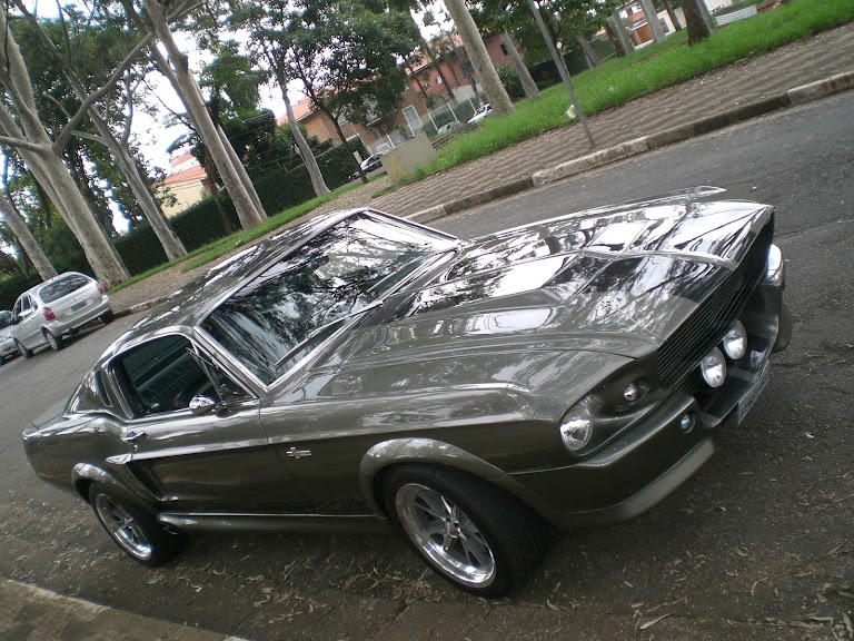Ford Mustang Hire S Paulo