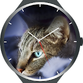 Cats Watch Faces