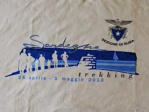 Photo: Il logo della maglietta ufficiale.