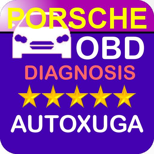 PORSCHE diagnosis coches lectura, borrado averías