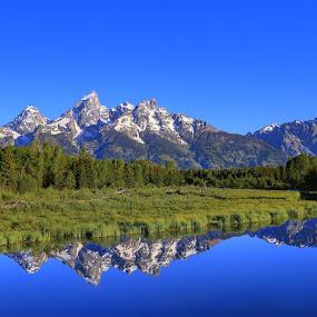 Teton Reflection by Mike Lennett - Landscapes Mountains & Hills ( reflection, national park, blue, wyoming, snake river, mike lennett, grand tetons, tetons, river )