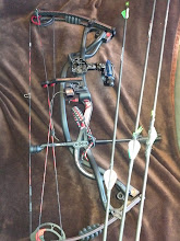 Photo: Robinhoods with the 2012 Hoyt CE and RetinalIQ