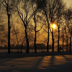 Golden hour by Zoran              Radunovic - Landscapes Forests