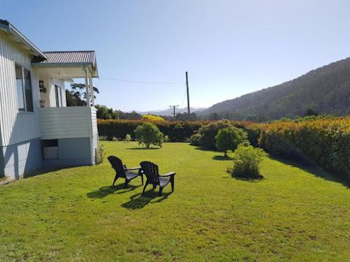Vendor finance or sale - Apple Orchard SW Tasmania