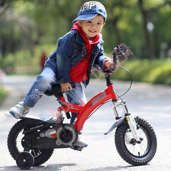 Xe đạp trẻ em ROYAL BABY B-9 1