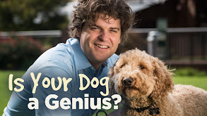 Is Your Dog a Genius? thumbnail