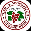 TuS Ellmendingen icon