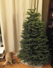 Photo: Finley helps me with the tree trimming.