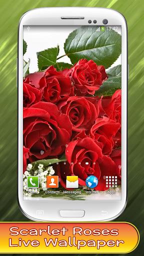 玩免費個人化APP|下載玫瑰動態壁紙 app不用錢|硬是要APP