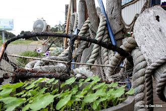 Photo: (Year 2) Day 351 - Fishing Kit Outside a Nautical Shop