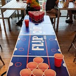 Flip Cup at St. Christopher's Hostels in Paris, Paris - Ile-de-France, France