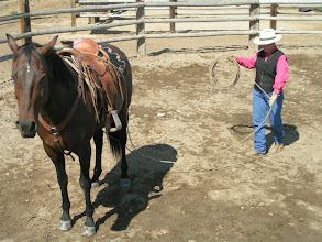 Photo: Be mindful as you coil-up to watch the horse, and keep the lariat between you and the horse.