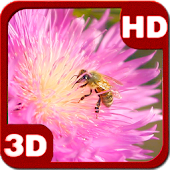 Happy Bee On A Pink Clover Flower Android APK Download Free By PiedLove.com Personalizations