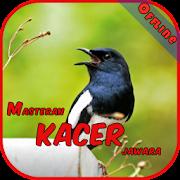 App Master Kacer Jawara Offline APK for Windows Phone