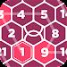 Rikudo - Number Maze icon