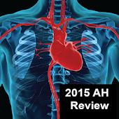 PALS MegaCodes AH Review-2015