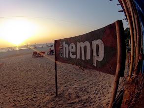 Photo: hemp