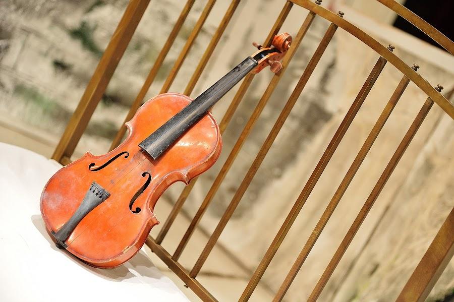 Sweet violin by Klaudia Klu - Artistic Objects Musical Instruments ( object, musical, instrument )