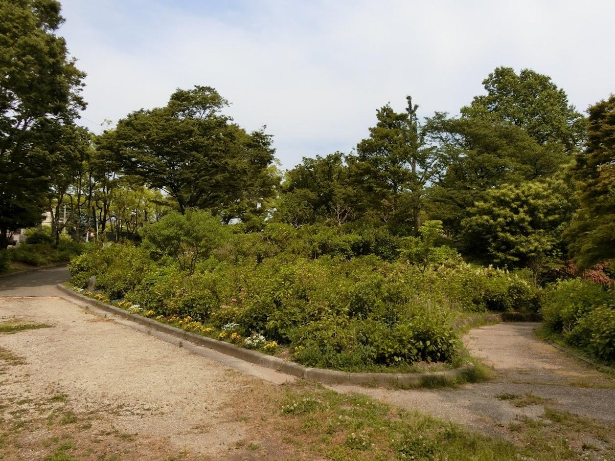 あじさいが咲く前の茶屋ヶ坂公園