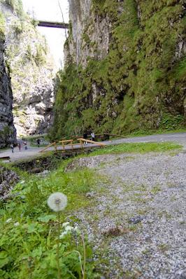 Attraverso il Canyon di Eugenio79