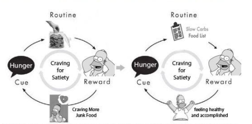 homer simpson cue routine reward habit cycle craving