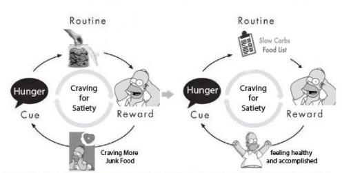 homer simpson cue routine reward habit cycle craving