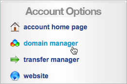 Domain manager is selected under Account Options.