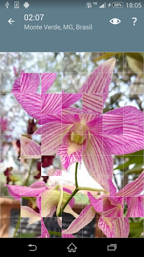Jigsaw Puzzle: Flowers screenshot 5