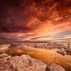 Surface of Mars by Craig Turner - Landscapes Sunsets & Sunrises ( moon, mars, mono lake, california, sunrise )