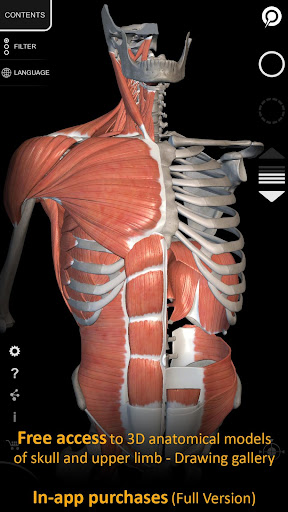 Muscle | Skeleton - 3D Atlas of Anatomy 1.8.2 screenshots 1