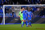 De sportief directeur van Schalke 04 is laaiend enthousiast over de transfer van Dries Wouters