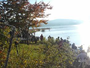 Photo: これは山中湖畔ですが、