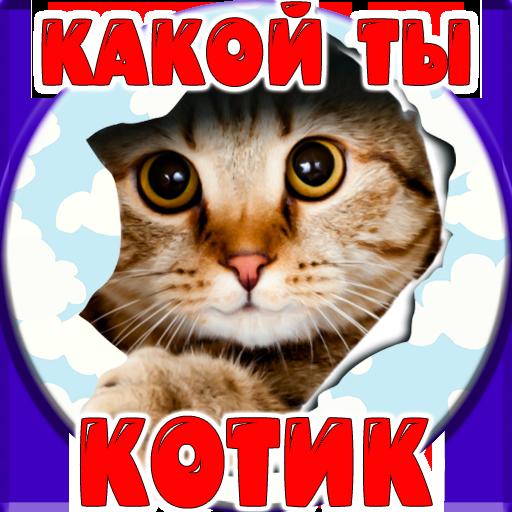 Тест: Какой ты Котик
