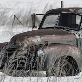 Shadows of the Past by Sheen Deis - Transportation Automobiles ( snow, antique, trucks, rusted, old trucks )