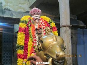 Photo: ready for puRappAdu in hamsa vAhanam