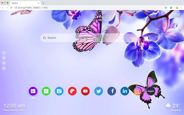 蓝色花朵 火爆风景 新标签页 高清壁纸 主题