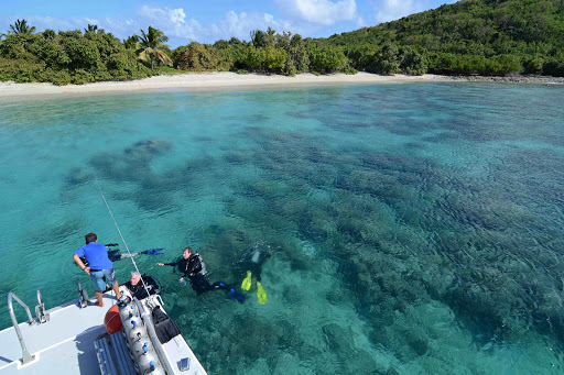 Culebra, with its history of army bombing range has a lot of ruined reefs. The good news is that it has even more undisturbed, pristine and remote dive sites.