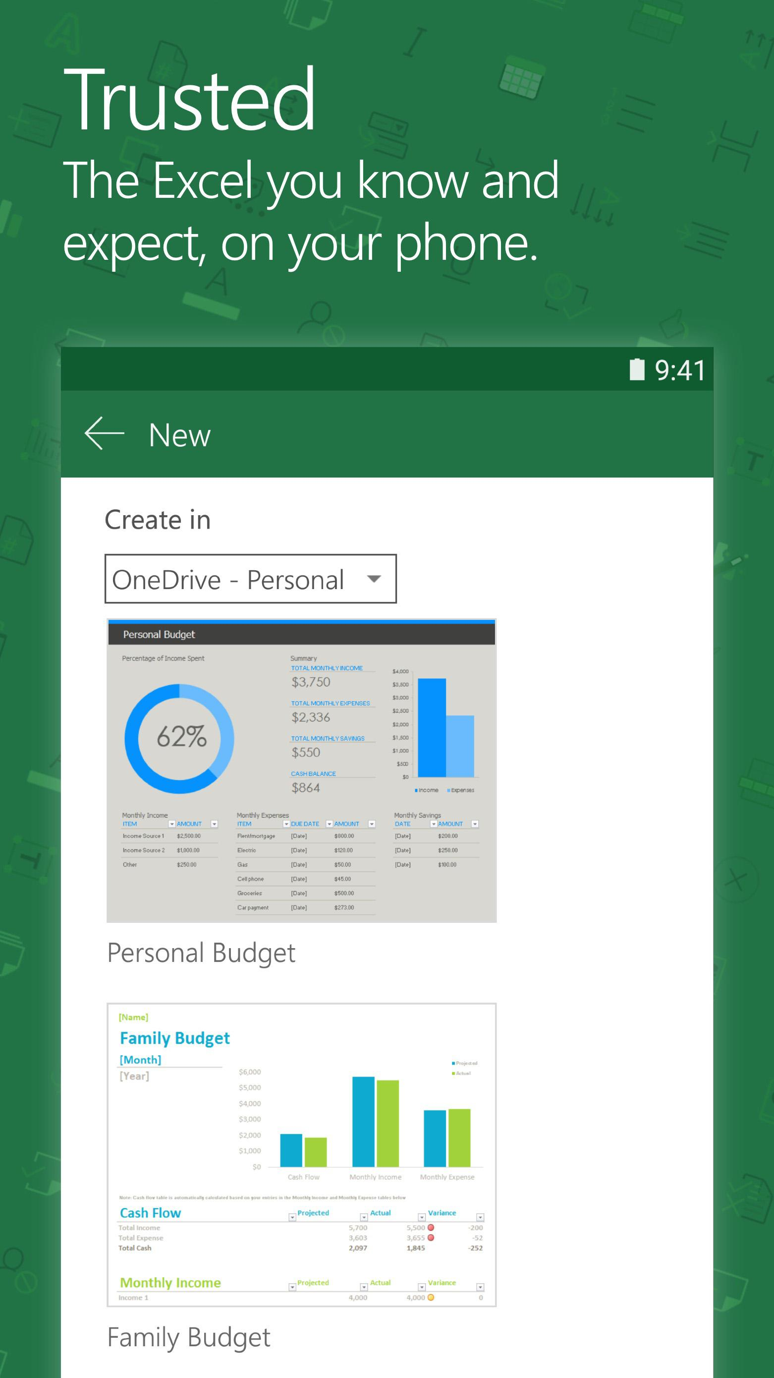 Microsoft Excel screenshot #2